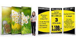 3-Kampagne-Roll-Up-med-print-w